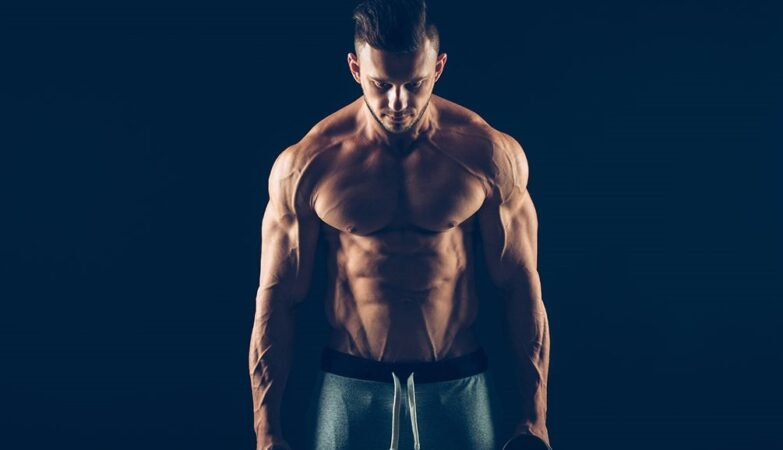 crazy bulk and how does it work